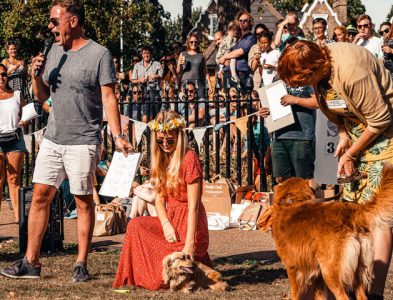 6 Best Fundraising Ideas for Animal Welfare Societies